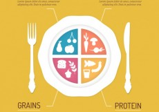 Free vector Infographic of food #17195