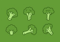Free vector Outlined Broccoli Vector Illustrations #15905