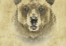 Free vector Polygonal bear #16004