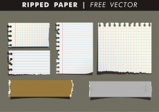 Free vector Ripped Paper Free Vector #18902