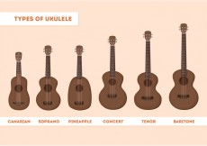 Free vector Ukulele Types #18561