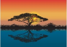 Free vector Acacia Tree African Sunset Vector #22874