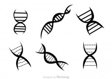 Free vector Double Helix Black Icons #26330