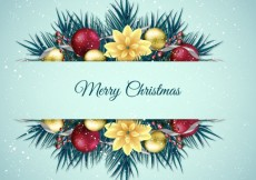 Free vector Floral christmas background #24604