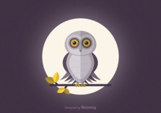 Free vector Free Barn Owl Vector Wallpaper #25313