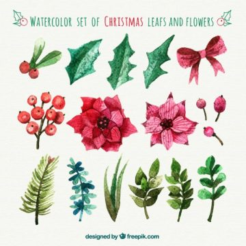 Free vector Hand painted christmas leafs and flowers #27820