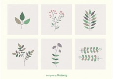 Free vector Leaves & Branches Vectors #23861