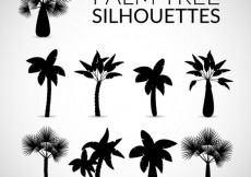 Free vector Silhouettes of palm tree #24712
