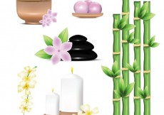 Free vector Spa elements #22296