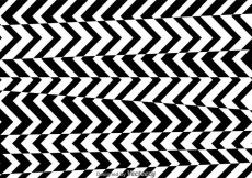 Free vector Stripe Black And White Pattern #26099