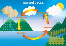 Free vector Water Cycle Diagram Vector #30684
