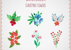 Free vector Watercolor christmas flowers collection #34459