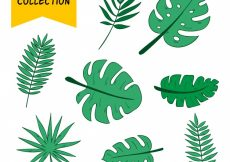 Free vector Collection of hand drawn palm leafs #434