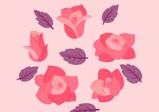 Free vector Collection of pink roses and purple leaves #2035