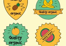 Free vector Set of hand-drawn ecological fruit stickers #1224