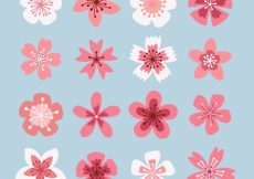 Free vector Assortment of cherry blossoms #11275