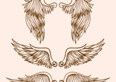 Free vector Assortment of great wings in realistic design #11885
