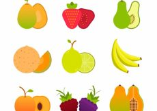Free vector Collection of fruits in flat design #10684