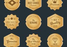 Free vector Collection of premium golden stickers #12127