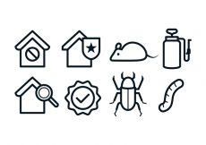 Free vector Free Pest Control Icons #7756