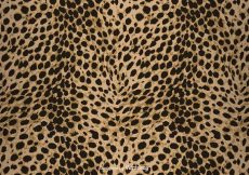 Free vector Free Vector Leopard Print Background #11304