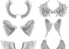 Free vector Great pack of hand-drawn wings #11901