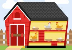 Free vector Henhouse with laying eggs background #9782