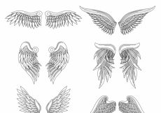 Free vector Realistic set of hand-drawn wings #11899