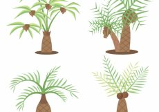 Free vector Set of types of palm trees #3761