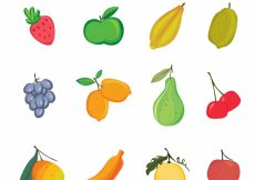 Free vector Variety of delicious fruits #4928