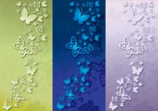Free vector Background Papillon Color #11128