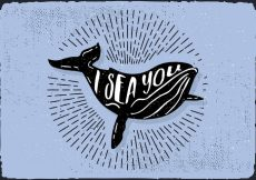 Free vector Free Hand Drawn Whale Background #8545