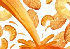 Free vector Watercolor background with juice and orange and pineapple slices #7126