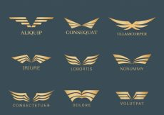 Free vector Collection of elegant golden wing logos #12955