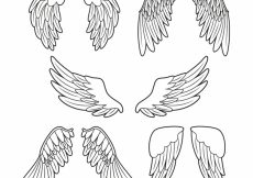 Free vector Collection with five decorative wings #14927