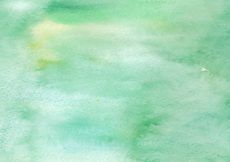 Free vector Green Watercolor Free Vector Texture #13252