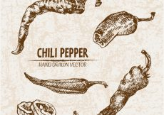 Free vector Hand drawn chili peper collection #13073