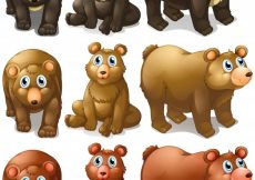 Free vector Illustration of different type of bears #13505