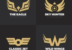 Free vector Pack of modern golden logos with wings #12949