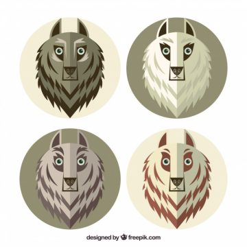 Free vector Pack of wolves in flat design #17689