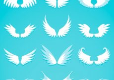 Free vector Variety of great wings in flat design #15015