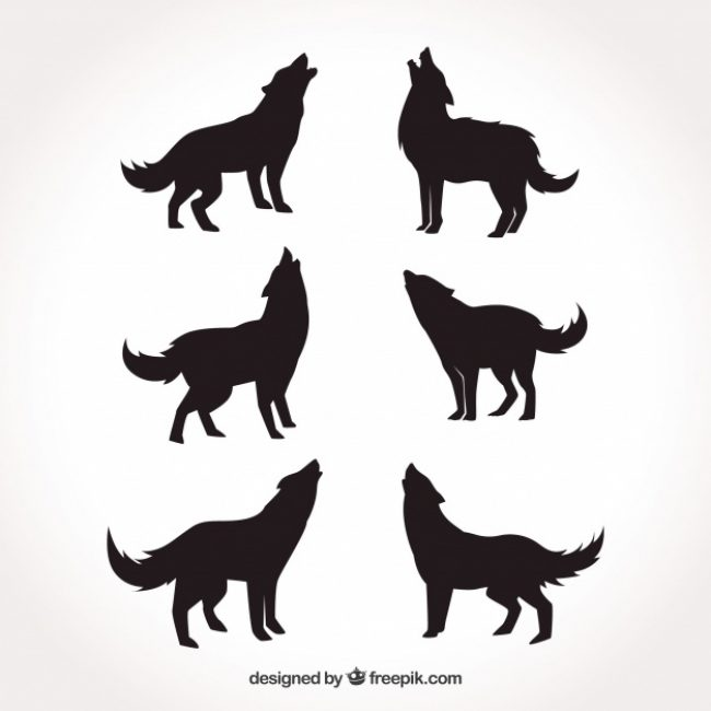 Free vector Various silhouettes of wolves #16181
