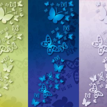 Free vector Background Papillon Color #14051