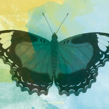 Free vector Watercolor Butterfly Background #16527