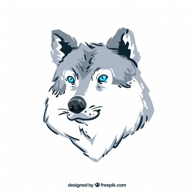 Free vector Watercolor wolf background #17692