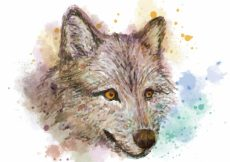 Free vector Watercolor wolf head background #16225