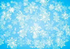 Free vector Winter Snowflake Background #12492