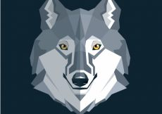 Free vector Wolf background in flat design #17687