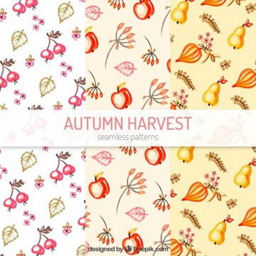 Free vector Autumn patterns with leaves and fruits #22547