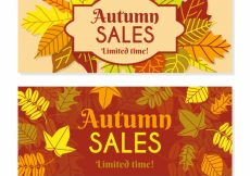 Free vector Autumn promotions #21668